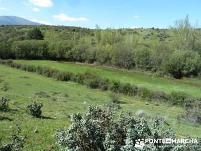 La pradera de la ermita de San Benito;grupo de senderismo madrid;senderismo madrid singles